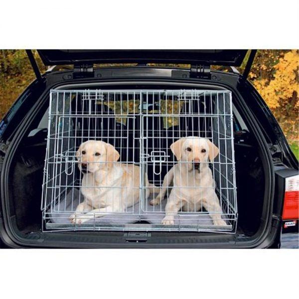 Le chien en voiture dauphine education canine le passage nord isere 2