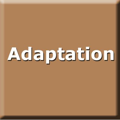 adaptation2