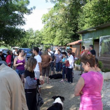 Fête annuelle 2016 dauphine education canine le passge nord isere (2)