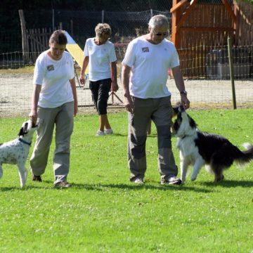 Fête annuelle 2016 dauphine education canine le passge nord isere (4)