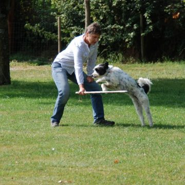 Fête annuelle 2017 dauphine education canine le passge nord isere (5)