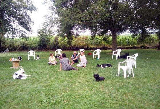 structurer la relation avec mon chien dauphine education canine le passage nord isere (1)